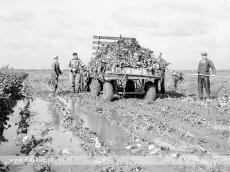 Foto behorende bij Film over Ontstaansgeschiedenis Goeree-Overflakkee